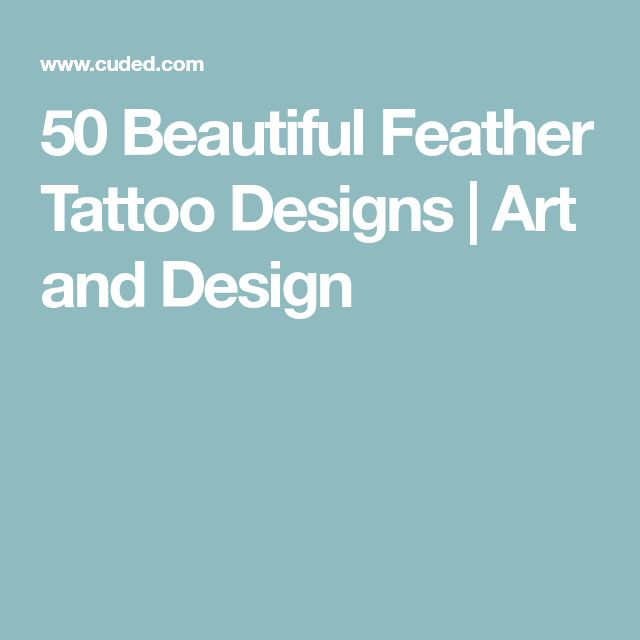 50 Beautiful Feather Tattoo Designs   Art and Design