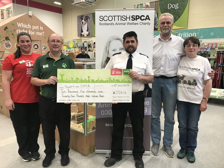 Latest news Scottish SPCA receive generous donation from 'Pets at Home'