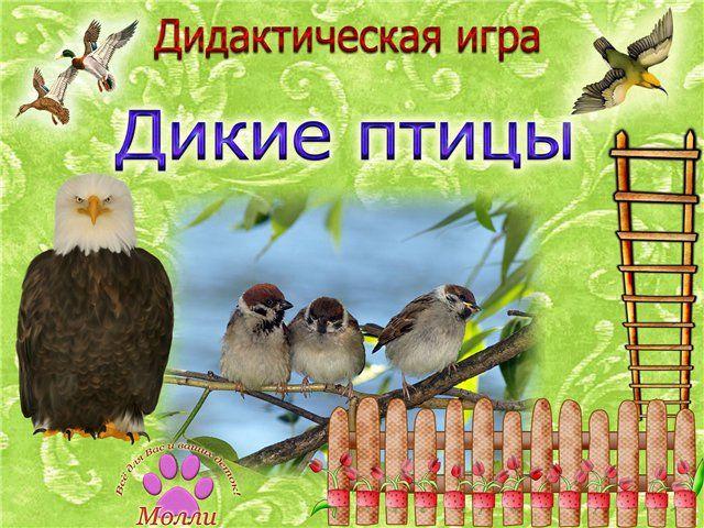 """Дидактическая игра""""Дикие птицы"""""""