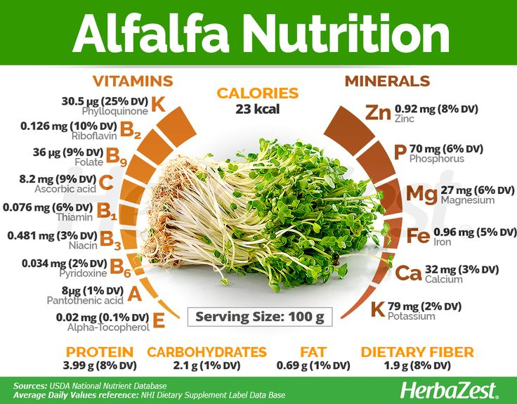 Alfalfa has many health properties apart from its nutritive value. Click on the…