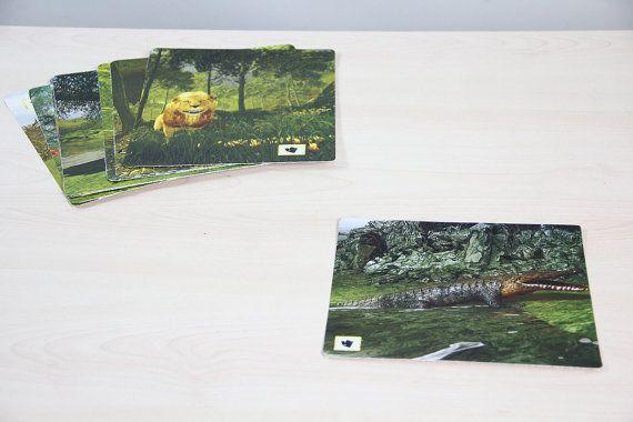 All animals cards printable cards kids games by OrangeKiteLabs