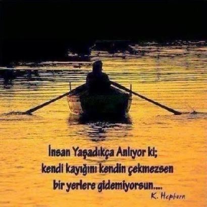 FB_IMG_1445183789604.jpg