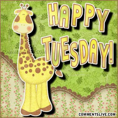 Happy Tuesday | Happy Tuesday picture