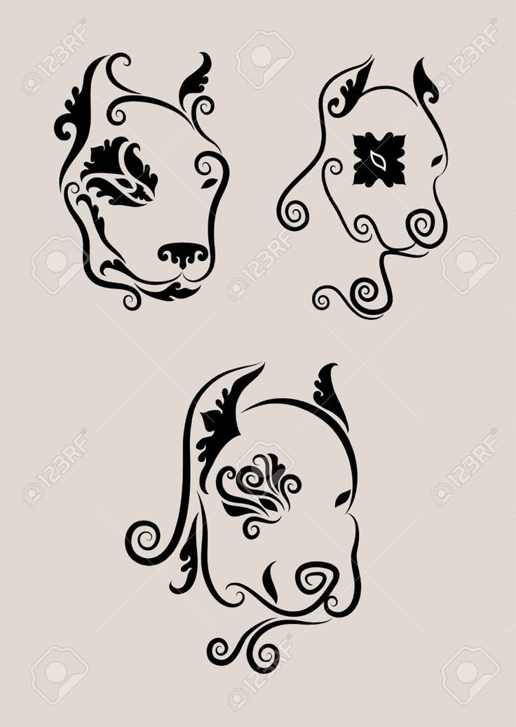 pitbull tattoo outline images galleries with a bite. Black Bedroom Furniture Sets. Home Design Ideas