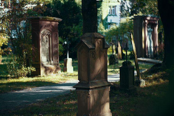 Friedhof Freiburg