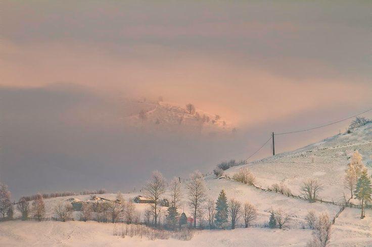 Winter - Magura, Brasov, Romania