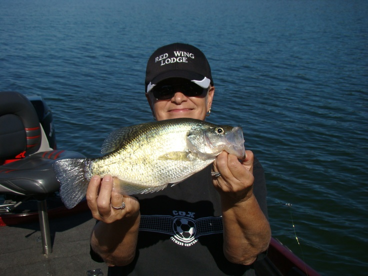 85 best images about crappie on pinterest for Crappie fishing in alabama
