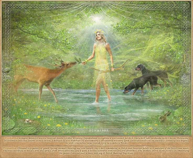Dziewanna - goddess of youth, spring, animals, hunting and wild nature. She is best remembered in Polish and Lusatian beliefs as guardian of he forests and woods.