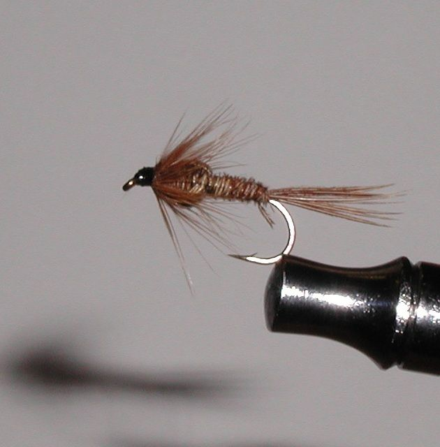 Of the many trout fly categories available nymphs are one of my favorites. They come in many shapes, styles and colors but they are mostly fished as a wet fly sinking the nymph down to the feeding fish. Nymphs are used to mimic the natural waterborne nymph creatures that are available to trout in rivers and lakes. Nymphs usually resemble the water bound stage of a flying insect like mayflies and can be found in the water for up to 2 years. These nymphs like stone flies and mayfly nymphs hide…