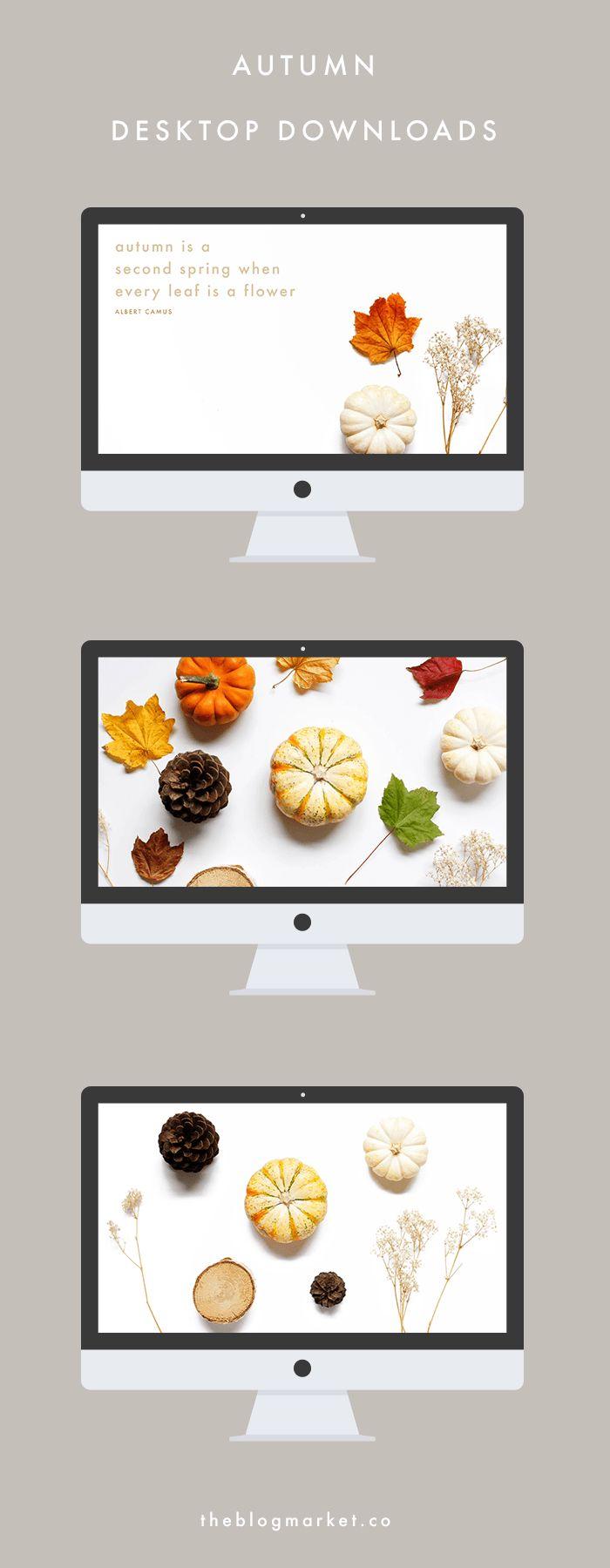 3 Autumn Desktop Downloads - The Blog Market