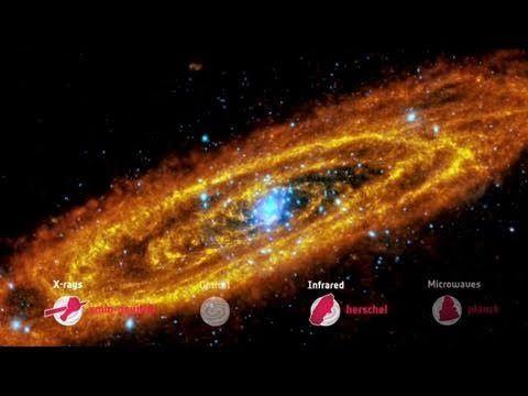 La galassia di Andromeda dalle microonde ai raggi X