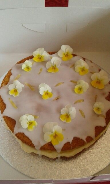 Lemon drizzle and elderflower cake