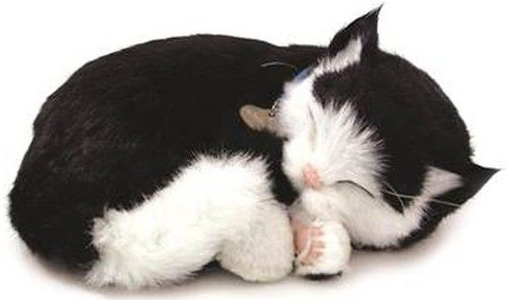 Adopteer je eigen huisdier. De Perfect Petzzz zien eruit als echte huisdieren, door hun zachte vacht en doordat ze lijken te ademen. Ze worden geleverd met een mandje, borstel en certificaat van adoptie. De Perfect Petzzz maken geen geluid en hebben een afmeting van 27 x 17 x 10 cm. Exclusief 1 D batterij. Er zijn verschillende Perfect Petzzz pups en katten verkrijgbaar.   Afmeting: volgt later.. - Perfect Petzzz soft B&W Dom Shorthair