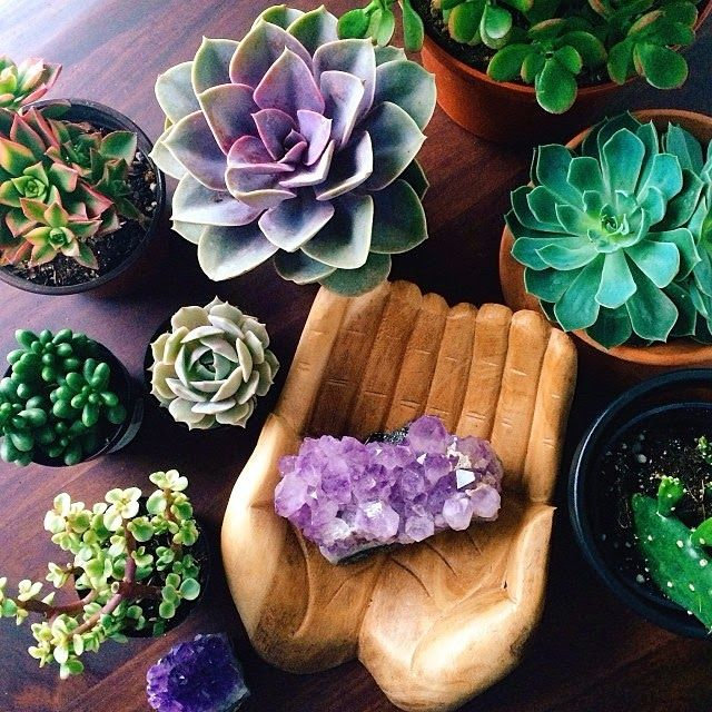 Moon to Moon: Decorating with Crystals: Amethyst and Succulents.