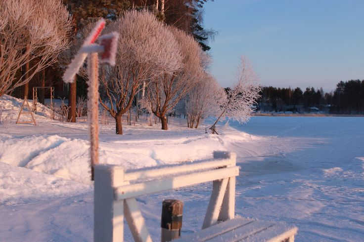#kevät parhaimmillaan  #luonto #piha  #Puruvesi  #Punkaharju #Suomi #houseforsale #Finland e   #spring
