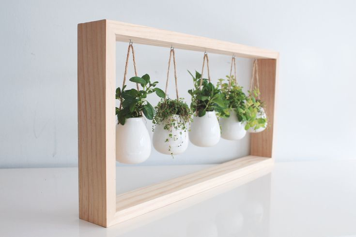 Indoor Herb Garden in Wooden Frame | Wall Mount Planter | Living Plant Wall | White Ceramic Pots | Hanging Planter | Botanical Wall Art