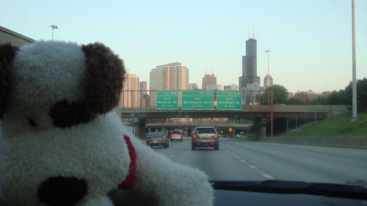 Rocco driving through Chicago