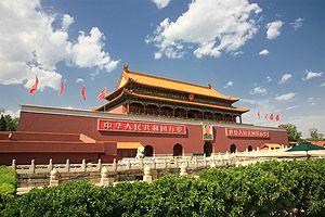China: Bronchitis - Inneren Krankheiten und deren Behandlung mit TCM