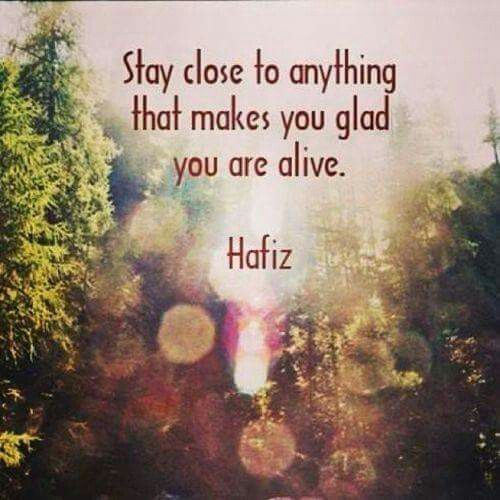 Hafiz Quotes Entrancing 29 Best Hafiz Images On Pinterest  Hafiz Quotes In Arabic And