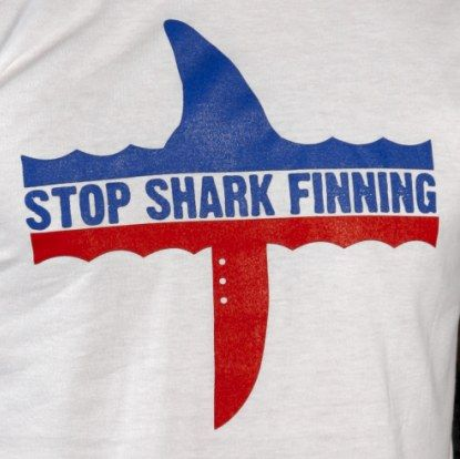 stopsharkfinning.net/tshirt.htmAwesome T Shirts, Favorite Things, Sharks Fin, Sharks T Shirts, Fin 24, Animal Activities, Fin T Shirts, Fin Shirts, Human