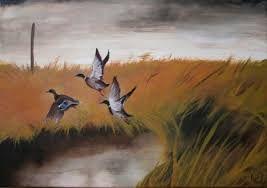 Картинки по запросу утки  на реках  ростовской области фото