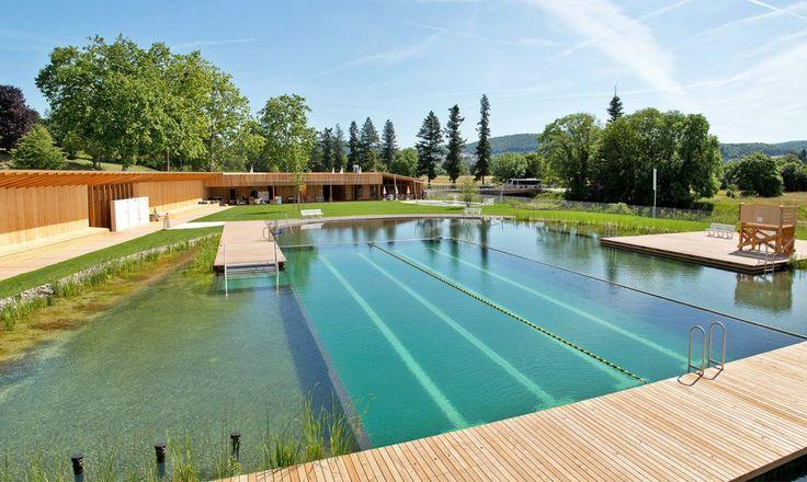 piscine bi-eaux - bassin écologique et bassin de nage   pool area, Gartenarbeit ideen