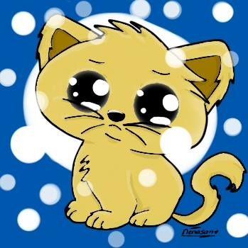 Mi Segundo gatito pintado en digital