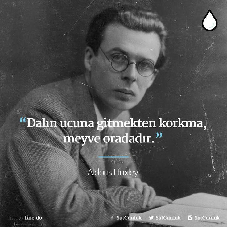 Dalın ucuna gitmekten korkma, meyve oradadır.   - Aldous Huxley  #sözler #anlamlısözler #güzelsözler #manalısözler #özlüsözler #alıntı #alıntılar #alıntıdır #alıntısözler
