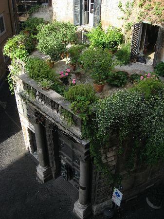 Roof top garden in Rome