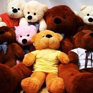 Cuddles Bear | Best Escape Room Singapore