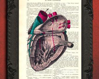 flores del corazón corazón corazón anatómico por MadameMemento