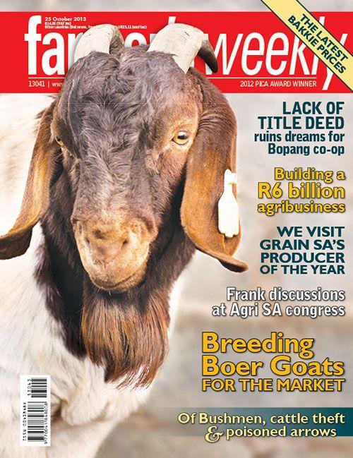 25 October 2013 - 'Breeding Boer goats for the market'