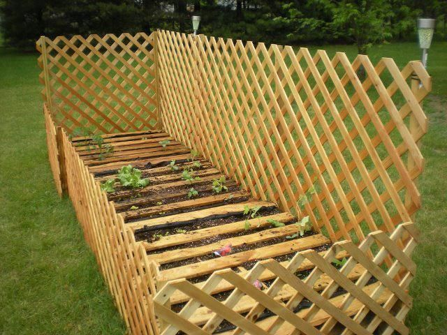 Lattice Framed Raised Pallet Garden Garden Pinterest