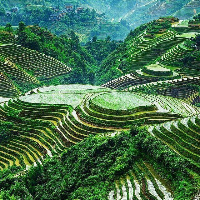 """via. @_travelbible  """"Banaue Rice Terraces - The Philippines . . . . . . . . #Travel #Holiday #Inspiration #RiceTerraces #Banaue #Philippines #TravelLife #Explore #Travelling #Traveller #SeeTheWorld #TheTravelBible""""  Zobacz więcej podróżniczych inspiracji na: http://ift.tt/2k1V00E  Polub nas na fb: http://ift.tt/2qiHjxm Poznaj nas na Twitterze: http://twitter.com/wagabundaclub - Polub nasz profil i oznacz nas na zdjęciu @wagabundaclub a podamy Twoje zdjęcie dalej :) - Zdjęcie…"""