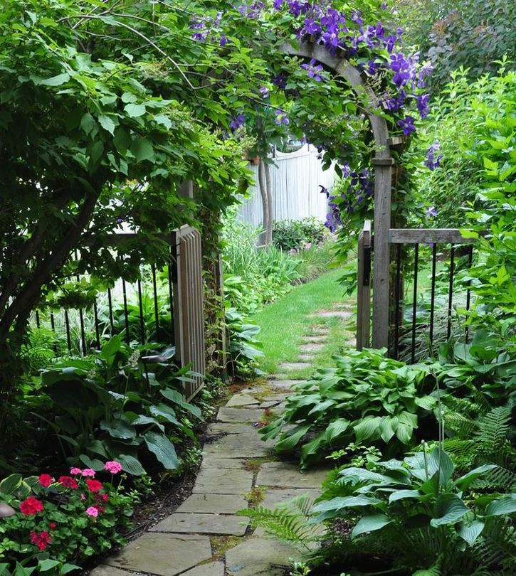 An arched gate covered in vines is a great way to define a space, especially if your looking for a secret garden feel to your area.