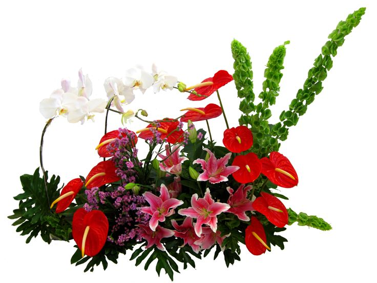 Gorgeous Pallette of Red Anthurium, Pink Stargazer Lilies, Pink Statis, and curved with 2 stems of Moon Orchid create a delightful, charming gift, long lasting display of dramatic bouquet.What a genuine treat that will capture everyone's attention! www.Flowerforsoul.com Info@flowerforsoul.com
