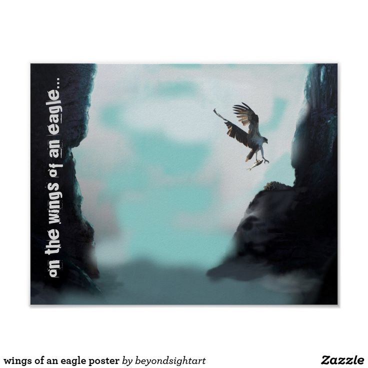 wings of an eagle poster