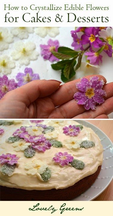 How to Crystallize Edible Flowers for a Cakes and Desserts