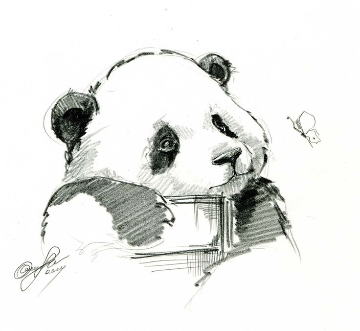http://instagram.com/elinasbears Elina'sArt #panda #animal #butterfly #art #pencil #cute #planet #sketch #drawing #illustration
