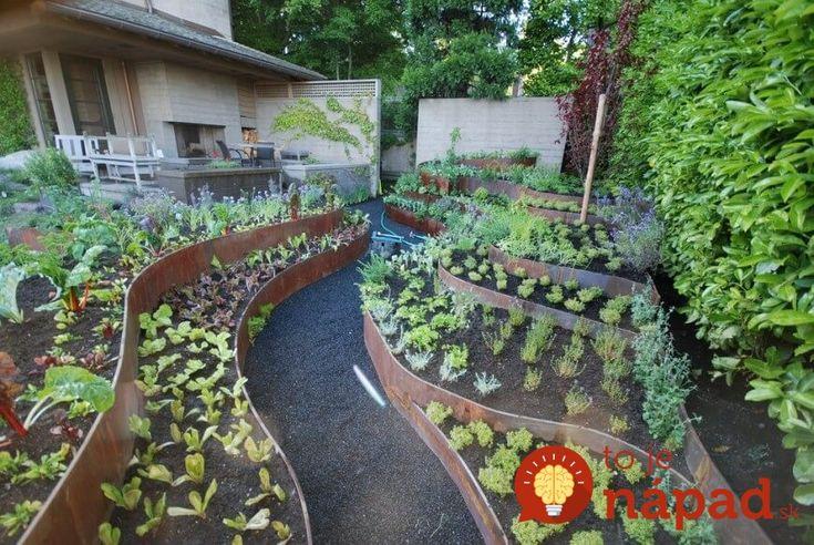Títo ľudia povýšili pestovanie zeleniny na novú úroveň: Inšpirujte sa ich nápadmi a práca v záhrade bude radosť!