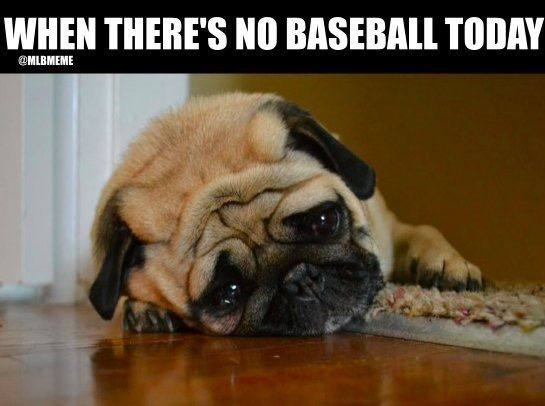 Me when the baseball season is over