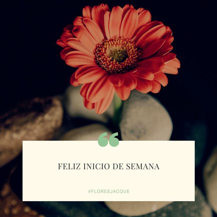 Feliz Inicio de Semana! #floresjacque te hace feliz.
