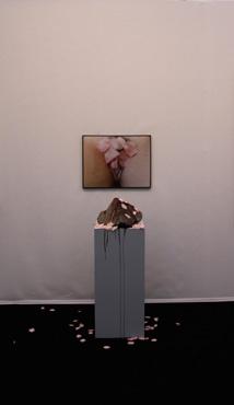 Paul-Armand GETTE, L'Apothéose des fraises, 2008