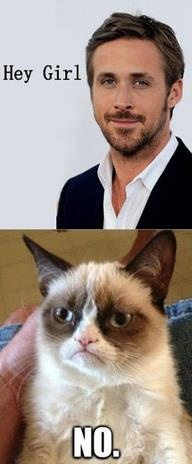 "Best laugh all day....my love of ""grumpy cat"" and ""hey girl"" in one!  Thank you to whoever made this one up!!"