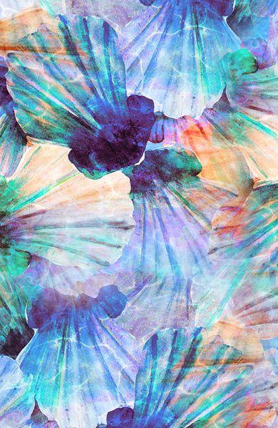 Nikki Strange Ocean seashells Art Print