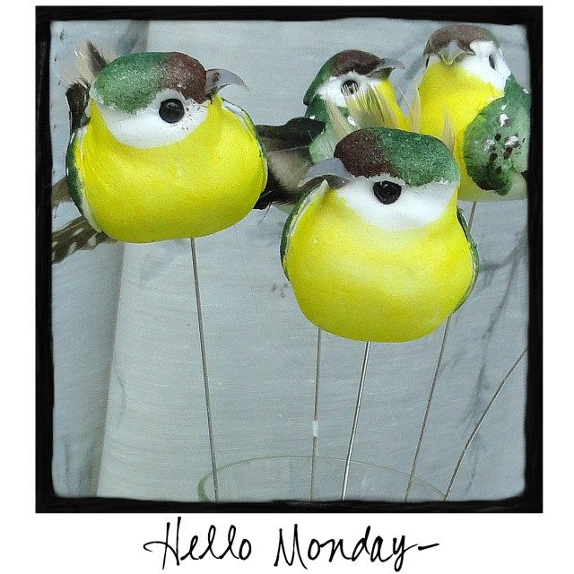 Hello Monday! Come by and visit me at http://www.facebook.com/awarmhello!