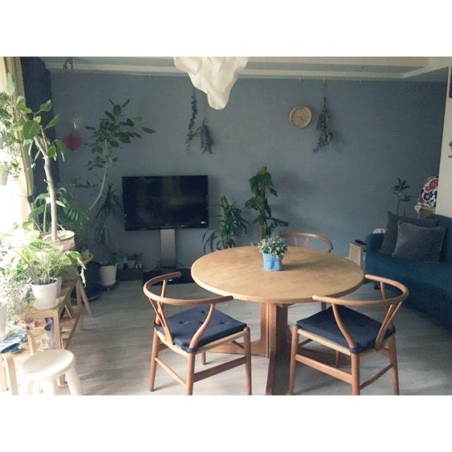 naoさんの、リビング,観葉植物,無印良品,IKEA,DIY,北欧,壁紙屋本舗,WOODPRO,Yチェアー,ブルーグレーの壁,マンション暮らし,NO GREEN NO LIFE!,のお部屋写真