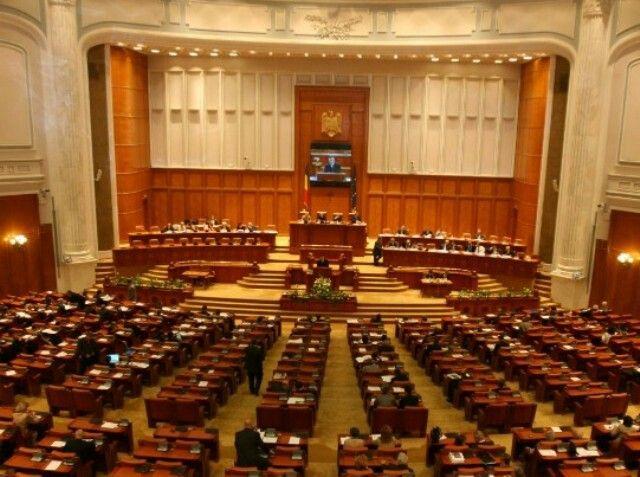 Legea cainilor fara stapan adoptata cu 266 voturi pentru, 23 impotriva, 20 abtineri.