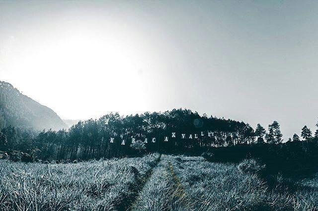 Karacak Valley ~ Saat ini Karacak Valley tengah populer di kalangan muda-mudi Garut baik untuk tujuan liburan bersama keluarga maupun hanya untuk sekedar berfoto-foto ria bersama teman-teman...