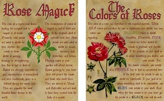 you can download the files without the vintage background and print them on a parchment like paper of your choosing. Below the thumbnail are your links!: Practical Magic, Practice Magic, Vintage Backgrounds, Witchi Stuff, Magical Spiritual, Magick Spel, Wittl Witchi